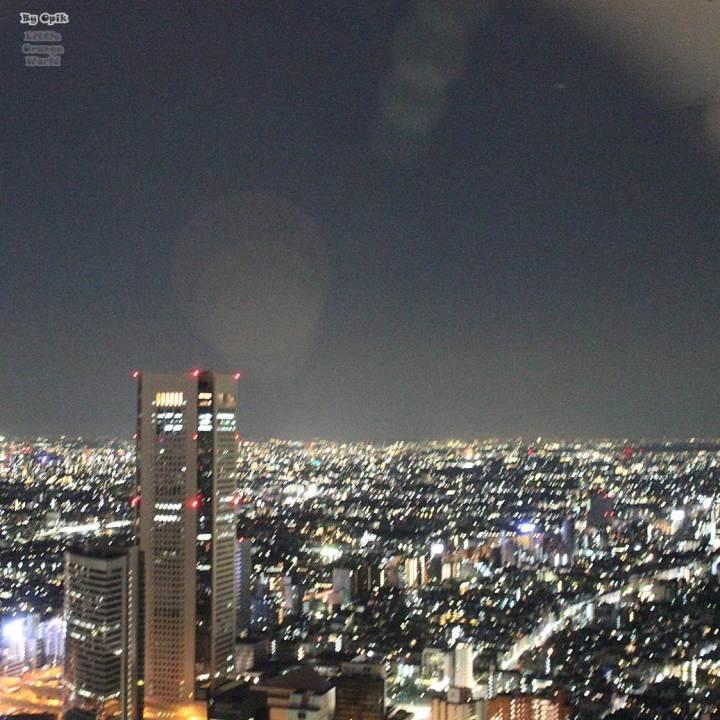 TokyoMetropolitan